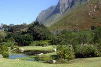 Harold Porter gardens