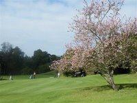 Plettenberg Bay golf course
